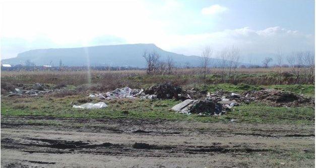 Дорогу у леса часто сопровождают кучи отходов